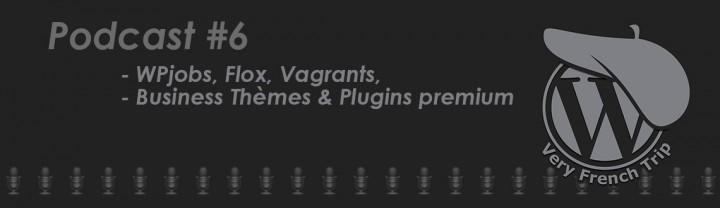 Podcast WordPress #6 – Thèmes et Plugins premium